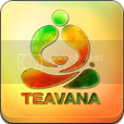Teavana Pictures, Images and Photos