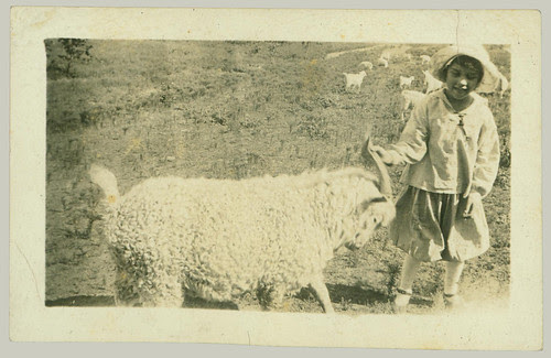 Child and ram