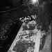 The Shia Grave
