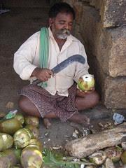 coconut me