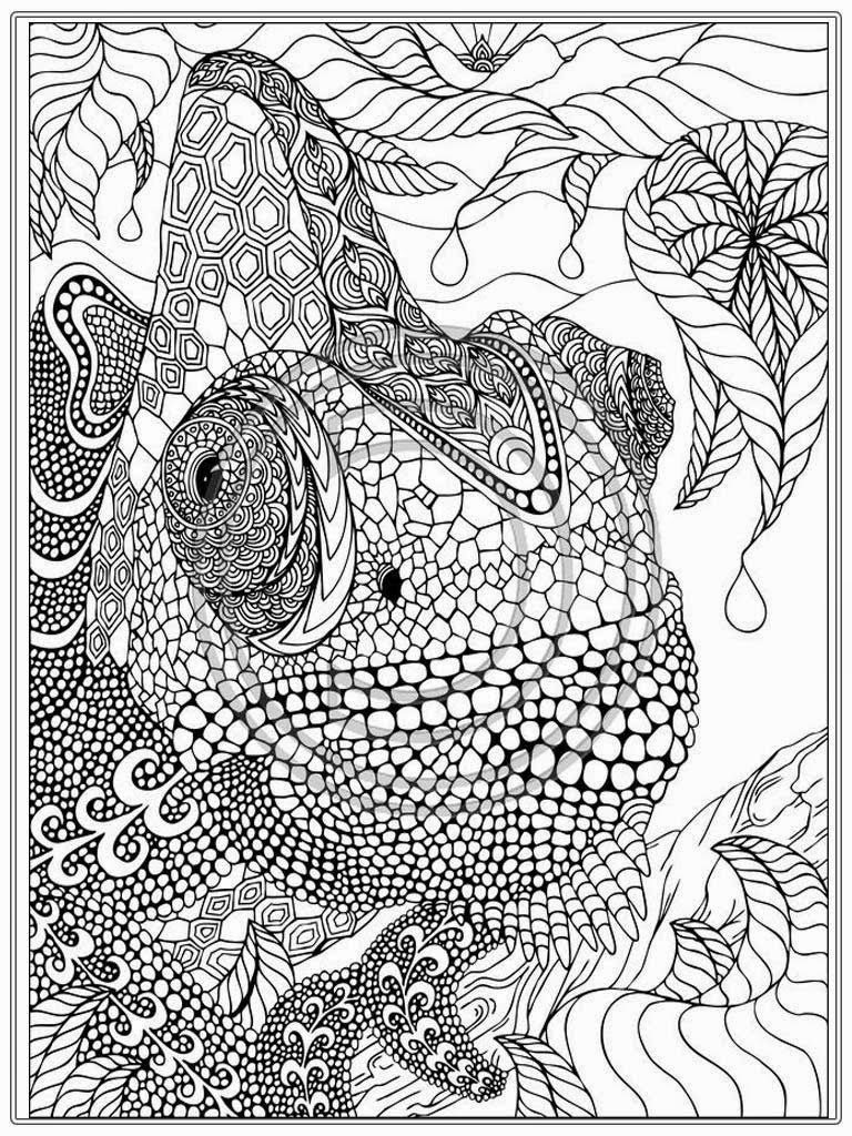 4400 Coloring Pages For Adults Jungle Animals , Free HD Download