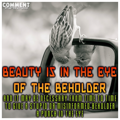 Beauty Is In The Eye Of The Beholder Commentwarehousecom