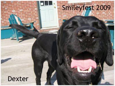 32-Dexter---2