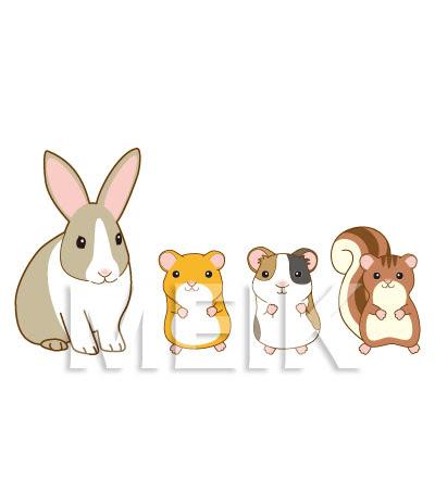 小動物のイラストうさぎモルモットハムスターリス