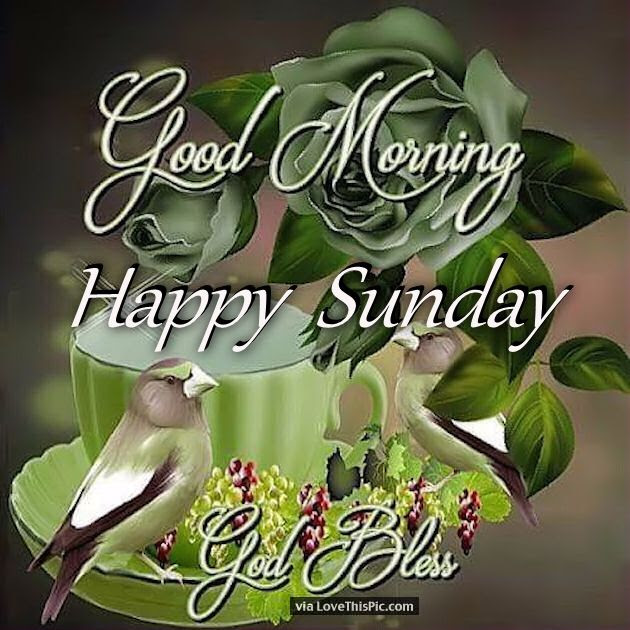 Good Morning Happy Sunday God Bless Pictures Photos And Images