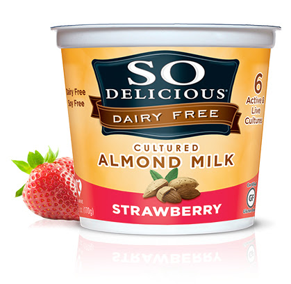 Product Review: So Delicious New Almond Milk Products ...