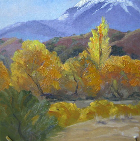 Poplar among Cottonwood by BYarborough