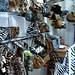 2006-10 Platinum Fashion Mall (8)