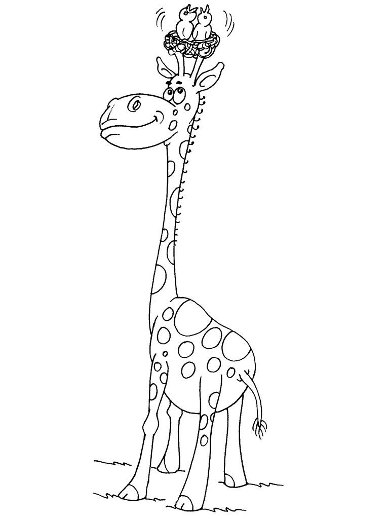 Dessin Coloriage de girafe imprimer et colorier