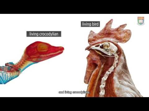 This Mesozoic Month: March 2017