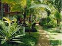Kauai Vacation Rental Condos by Owner = Garden and Pool Pictures