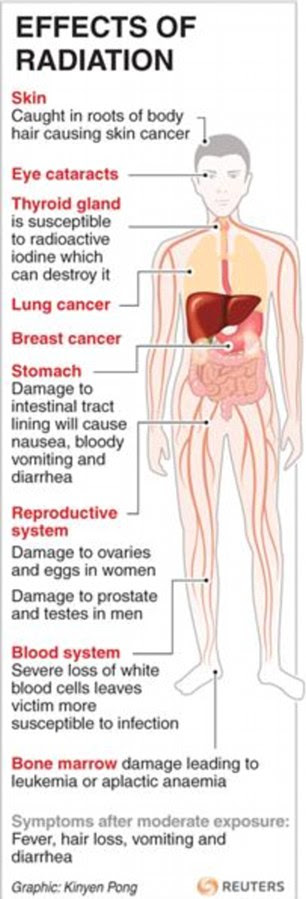 The risks of radiation on the human body