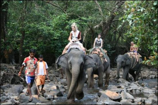 Bhagwan Mahavir Wildlife Sanctuary Goa India Map,Map of Bhagwan Mahavir Wildlife Sanctuary Goa India,Goa Tourists Destinations Attractions,Bhagwan Mahavir Wildlife Sanctuary Goa India accommodation destinations attractions hotels map reviews photos pictures