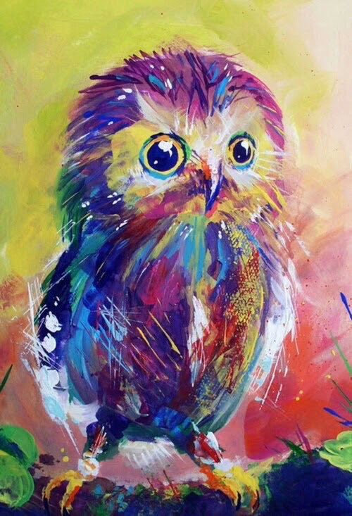 background, backgrounds, cellphones, colors, ipad, iphone, owl, owls, phone, wallpaper