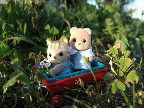 Waffle Cat and Biscuit Bear go for a ride