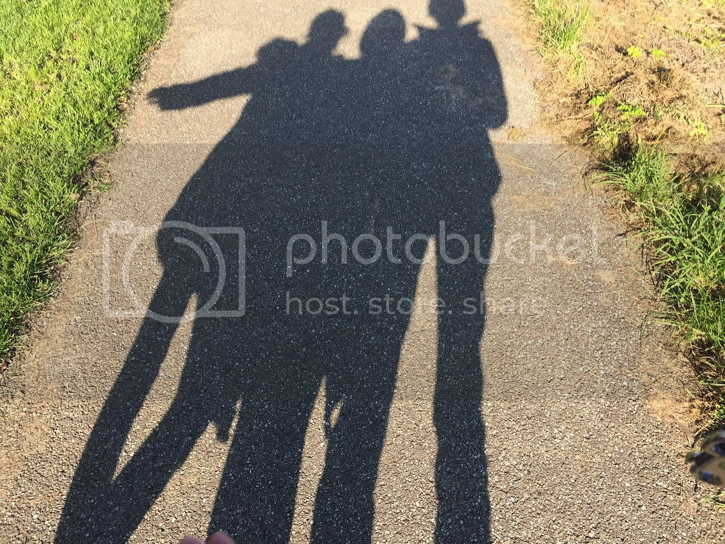 10/20/16 Sweet and playful photo Look how long our shadows are.jpg