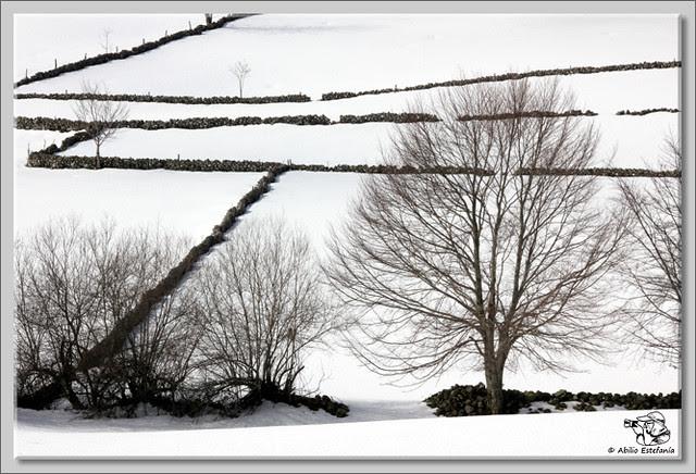 5 Nieve en Lunada