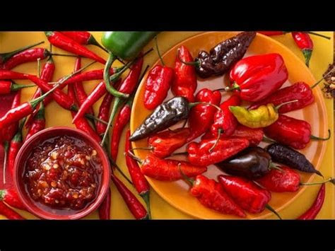 worlds hottest foods youtube