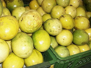 Yellow passion fruits for sale. Picture taken ...