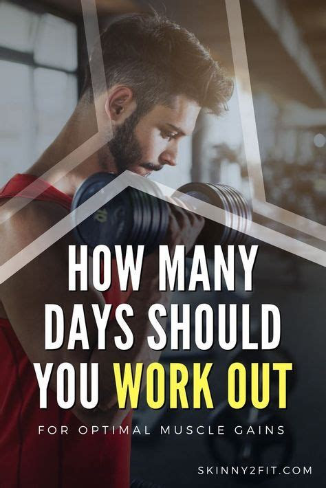 days   work   optimal muscle gains