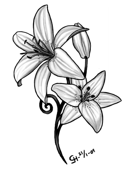 Lily Tattoo Meaning Ideas Image Tattoomagz
