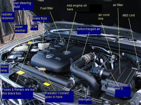Nissan Navara Engine Diagram
