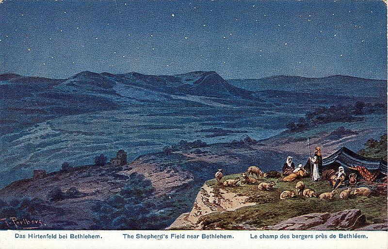 File:Hirtenfeld bei Bethlehem.jpg