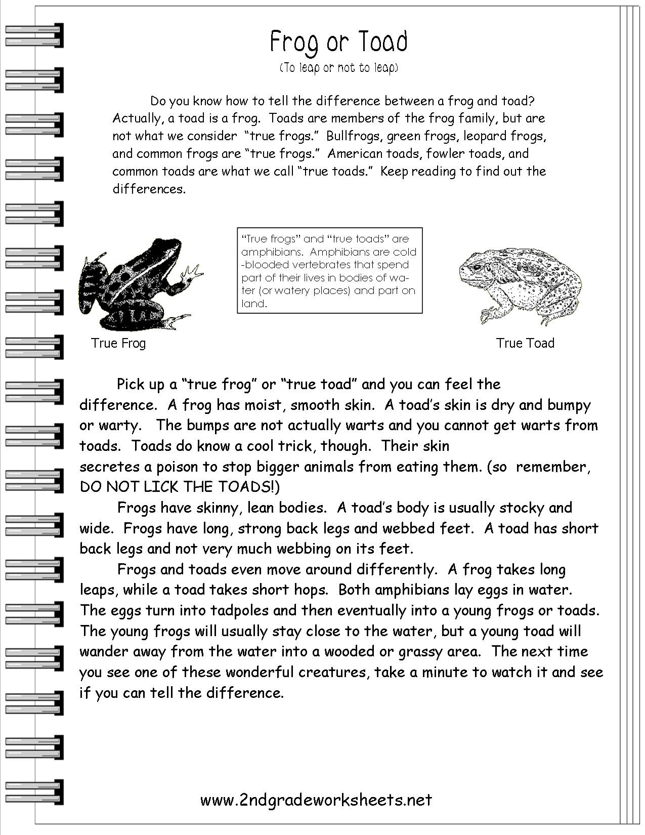 15 Best Of Informational Text Features Worksheets