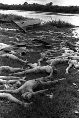 Genocide II