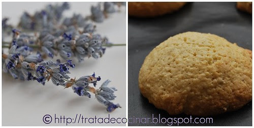 Duo galletas lavanda