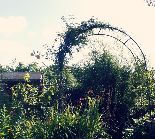 2 day in the life uk lifestyle blog vivatramp garden
