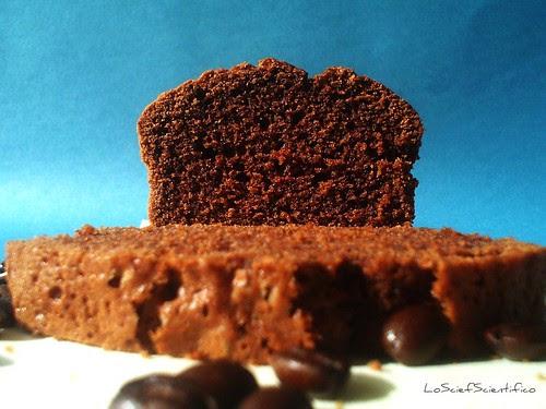 Gluten&Lactose Free Chocoffee Plum Cake