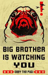 Click here for propaganda for the Pug Revolution!