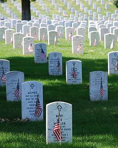 Graves at Arlington on Memorial Day.JPG