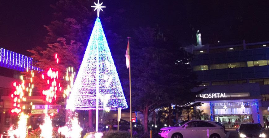 Christmas Light Up 2016 Assisi Hospice