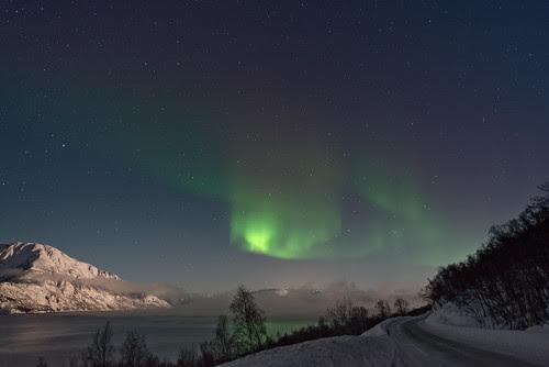 Aurora - Langfjord