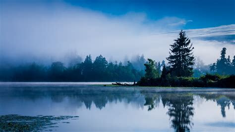 lake morning mist blue forest water reflection