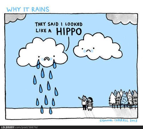 Why it rains. | LOLBRARY.COM