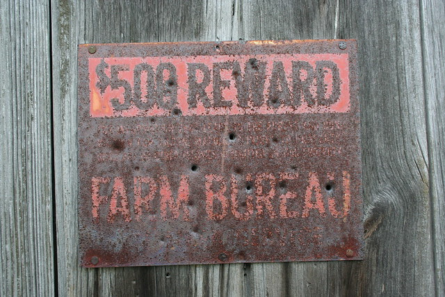 $500 Reward, Farm Bureau