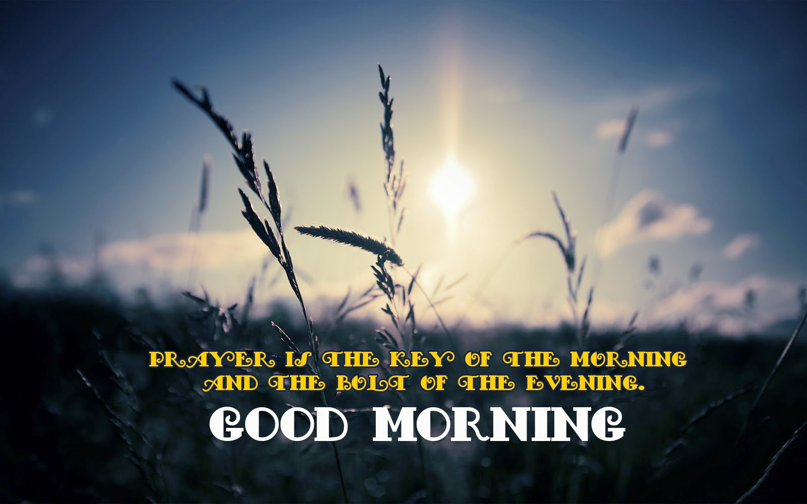 Download Best Good Morning Quote With Image Good Morning