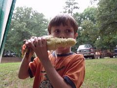 roasted corn by Teckelcar
