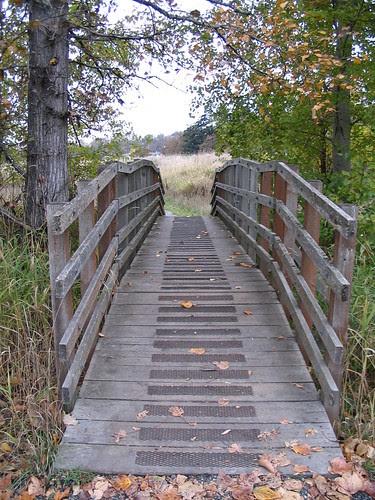 Path around Swan Lake, Victoria BC