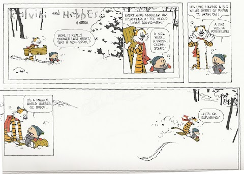 The Last Calvin And Hobbes Comic Strip