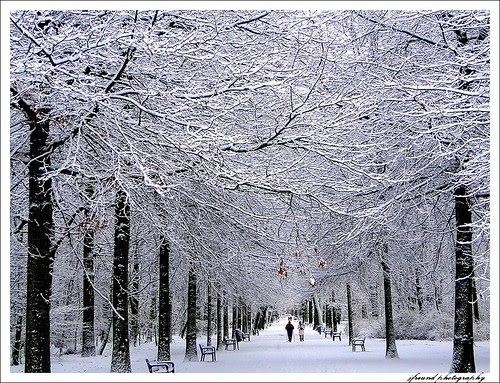 The first fall of snow is not only an event, it is a magical event. You go to bed in one kind of a world and wake up in another quite different, and if this is not enchantment then where is it to be found?