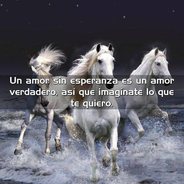 Un Amor Sin Esperanza Es Un Amor Frases Con Imagenes