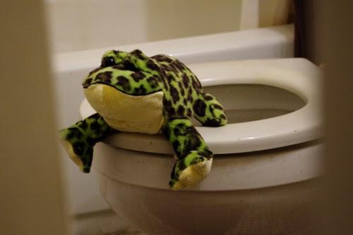 jumpsan in bathroom.jpg