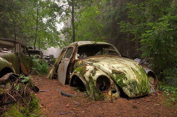 Chatillon-car-cemitério abandonado-carros-cemitério-Bélgica-1