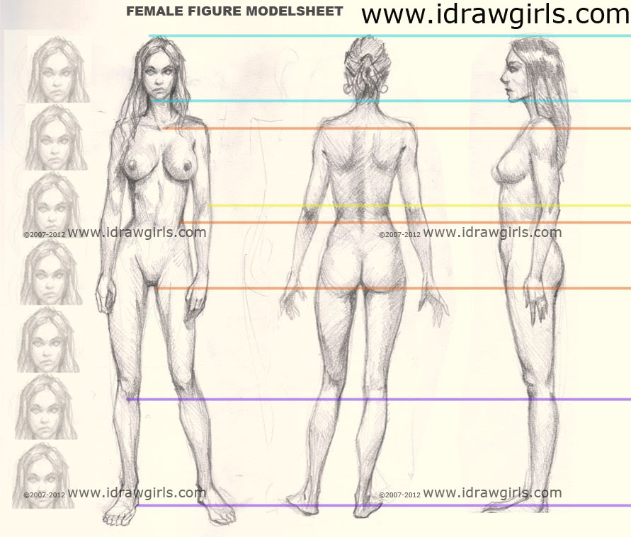 woman body, female figure model sheet