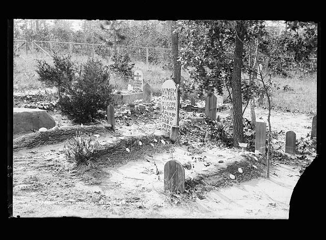 Scene in Magnolia (colored) cemetery, Aiken, S.C.