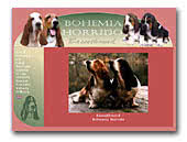 Basset Hounds Bohemia Horrido